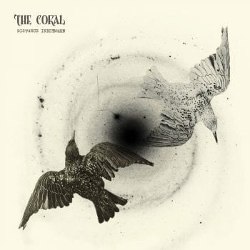 The_coral